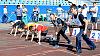 «Швабе» провел летнюю спартакиаду по легкой атлетике в Вологде