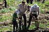 В акции «Лес Победы» приняли участие сотрудники «Швабе»
